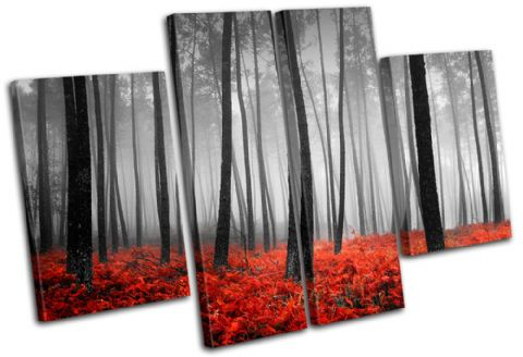 Stunning Forest Landscapes - 13-0775(00B)-MP17-LO